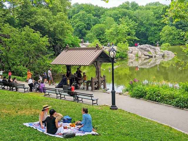 Central Park NYC (1)