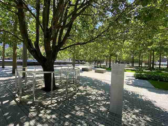 911 Memorial (6)