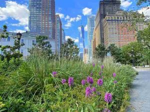 The Battery Park (7)