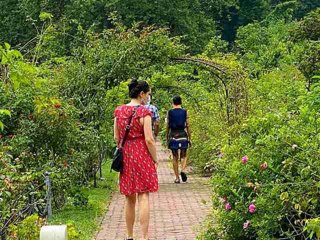Brooklyn Botanic Garden (11)