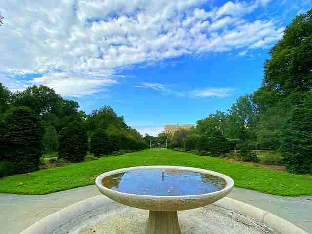 Brooklyn Botanic Garden (2)