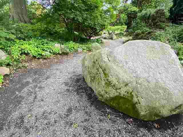 Brooklyn Botanic Garden (30)