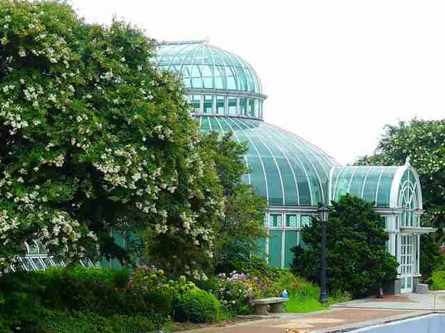 Brooklyn Botanic Garden (34)