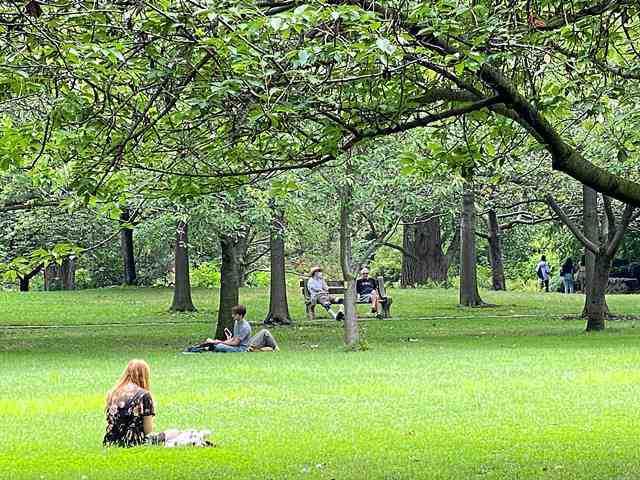 Brooklyn Botanic Garden (8)