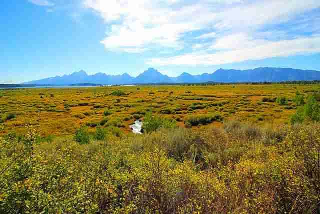 Grand Teton National Park (2)