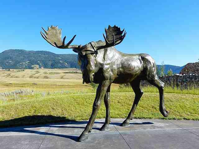 Grand Teton National Park (27)