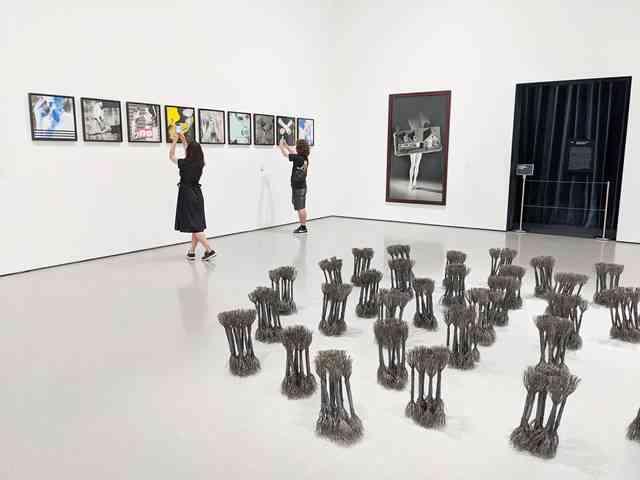MoMA (17)