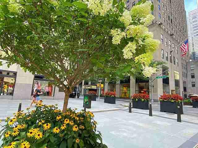 Rockefeller Center (7)