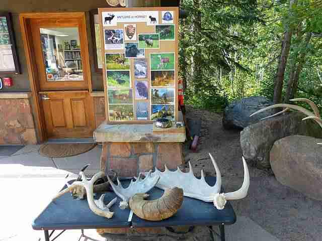 Rocky Mountain National Park (22)