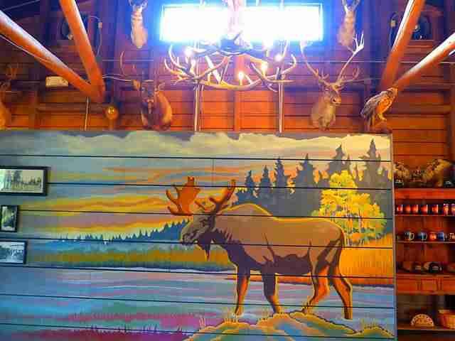 Rocky Mountain National Park (33)