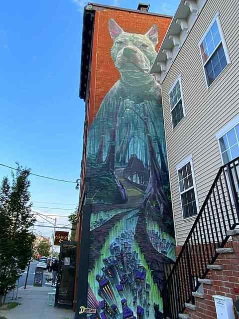 Street Art Jersey CIty (13)