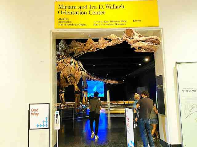 American Museum of Natural History (10)