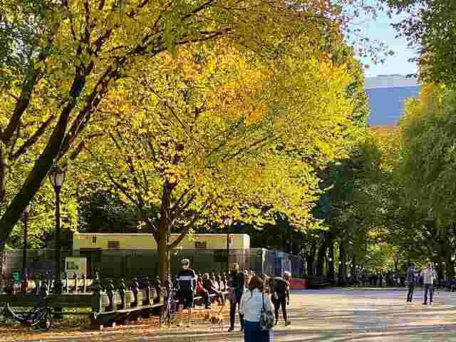 Central Park (5)