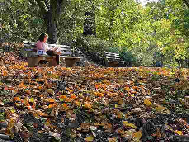 Fort Tryon Park (11)