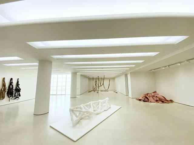 Guggenheim Museum (10)