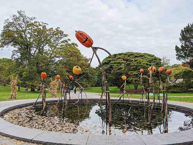 New York Botanical Garden (13)