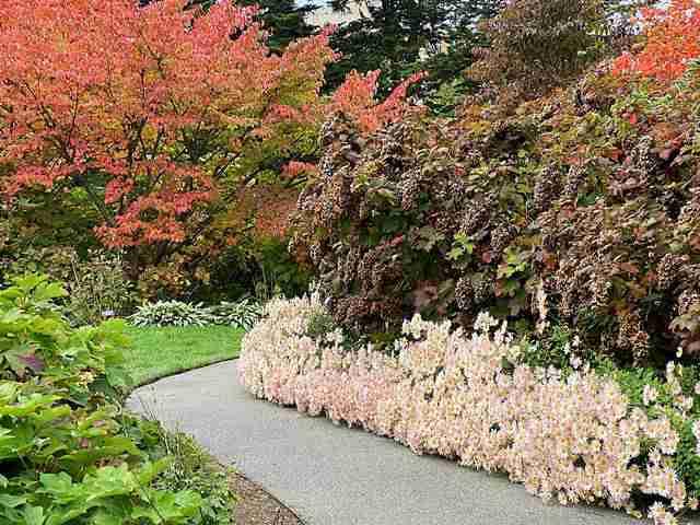 New York Botanical Garden (14)