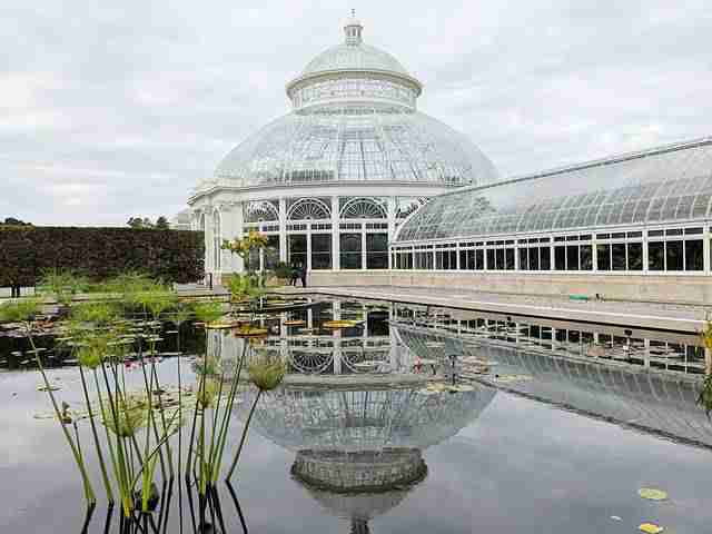 New York Botanical Garden (14)