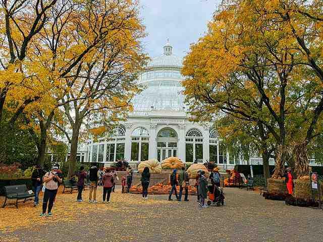 New York Botanical Garden (2)