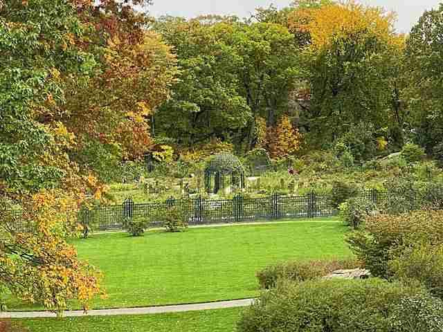 New York Botanical Garden (23)