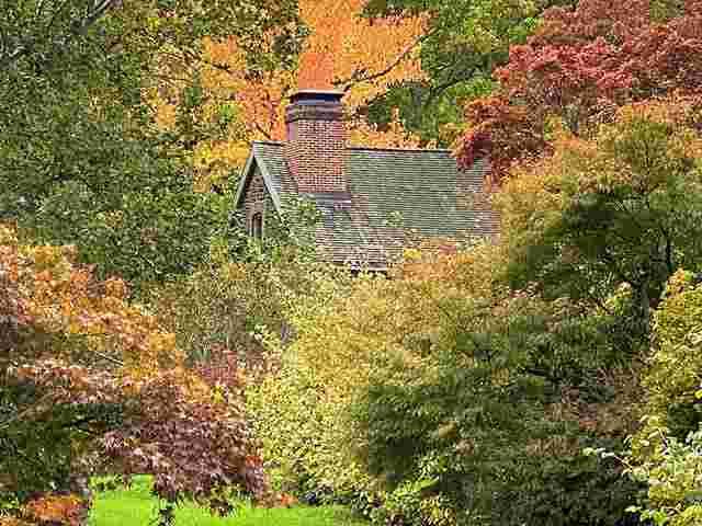 New York Botanical Garden (25)