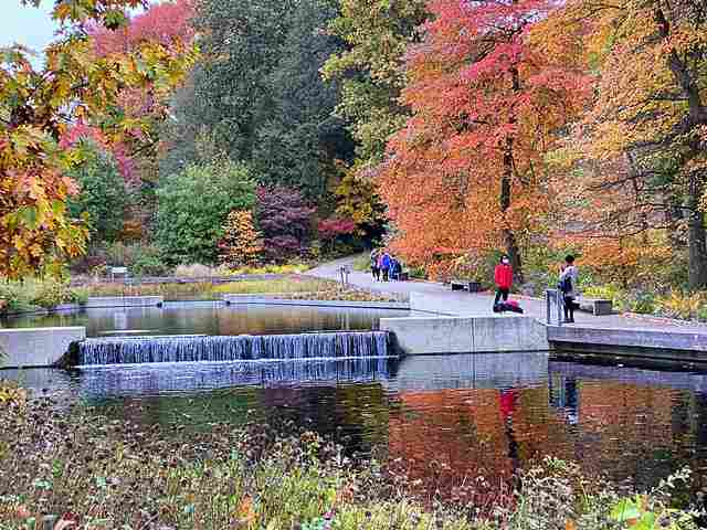 New York Botanical Garden (6)