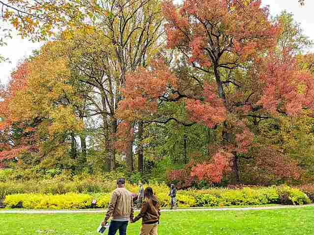 New York Botanical Garden (7)