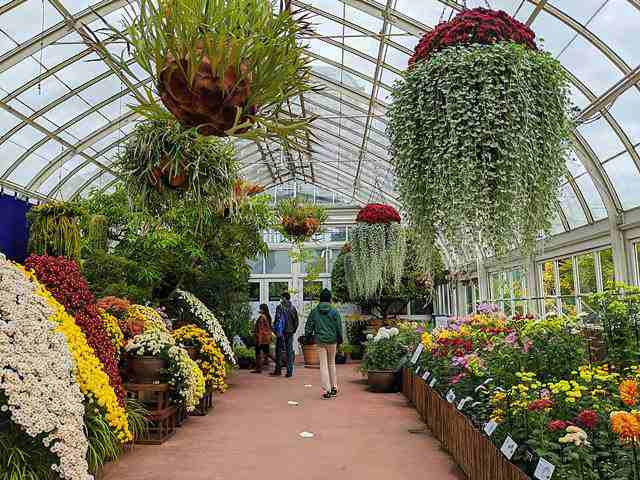 New York Botanical Garden (9)