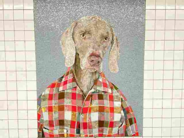 William Wegman (1)