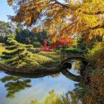 Brooklyn Botanic Garden (7)