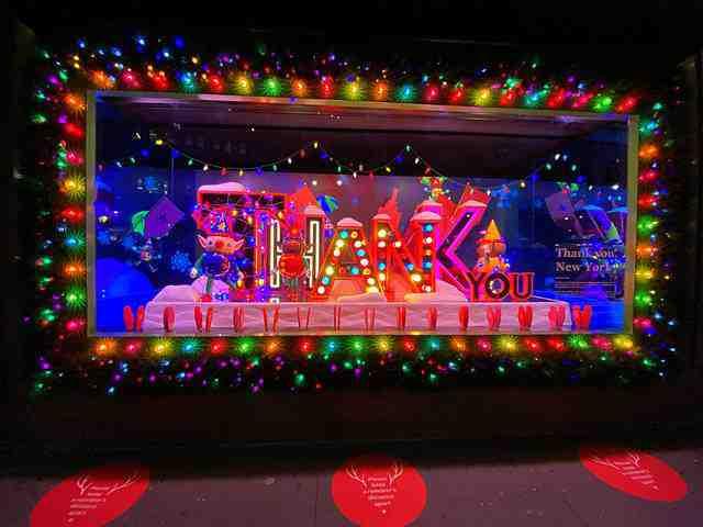 Macy's Holiday Windows (12)
