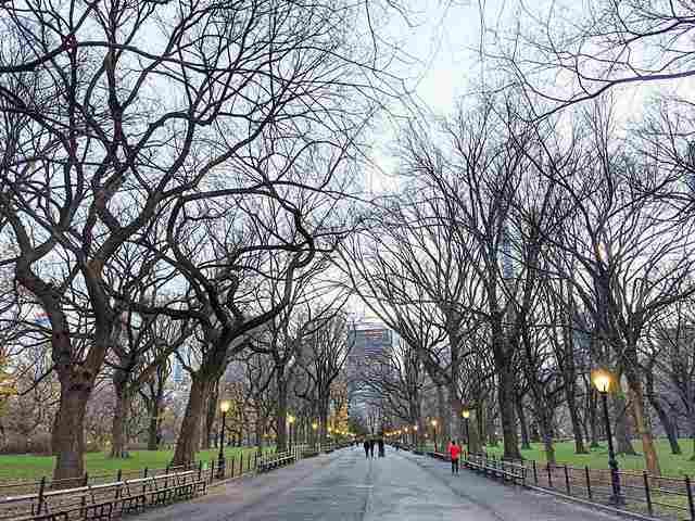Central Park (23)