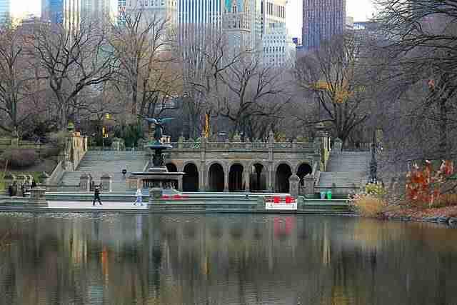 Central Park (7)