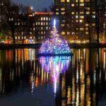 Central Park Christmas Tree (4)