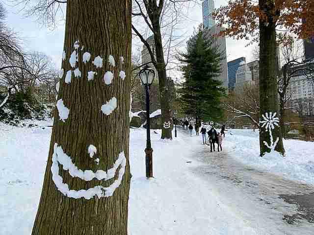 Central Park Snow (10)