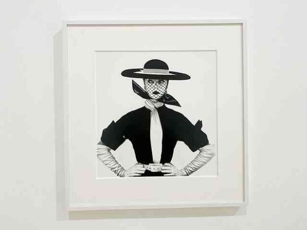 Irving Penn Pace Gallery (1)
