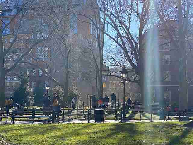 Washington Square Park (2)