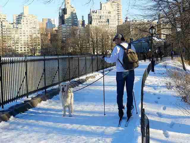 Central Park (15)
