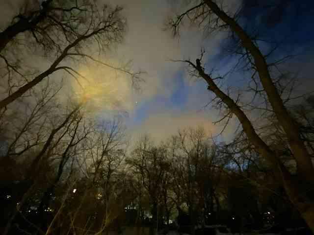 Central Park (25)