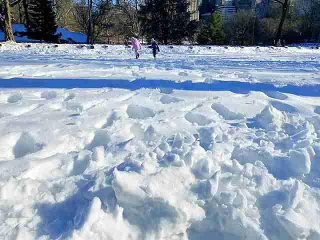 Central Park Snow Art (12)
