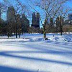 Central Park Snow Art (5)