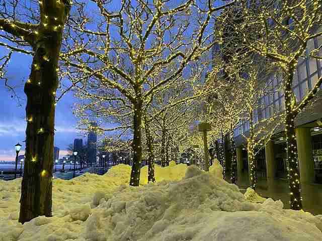 NY Snow (11)