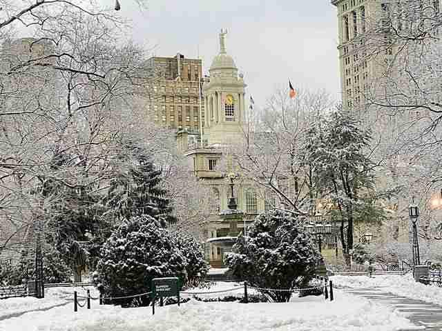 NY Snow (3)