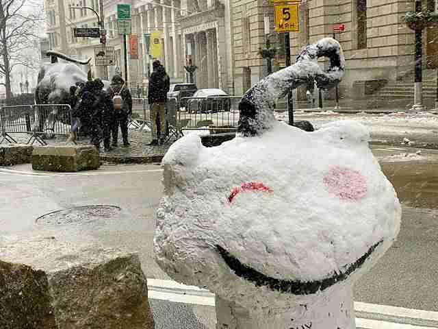 NY Snow (8)