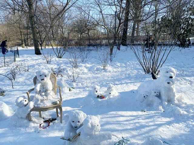 Snow Bears (3)
