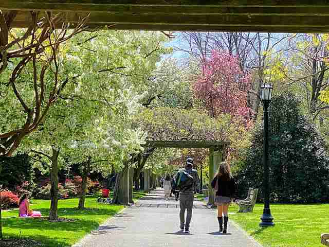 Brooklyn Botanic Garden (9)