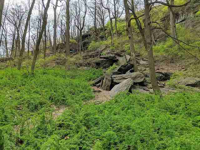 Inwood Hill Park (14)