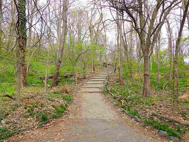 Inwood Hill Park (6)