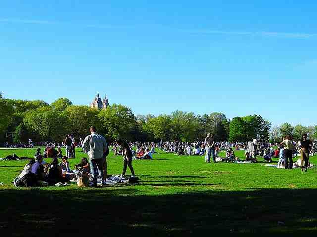 Central Park (27)