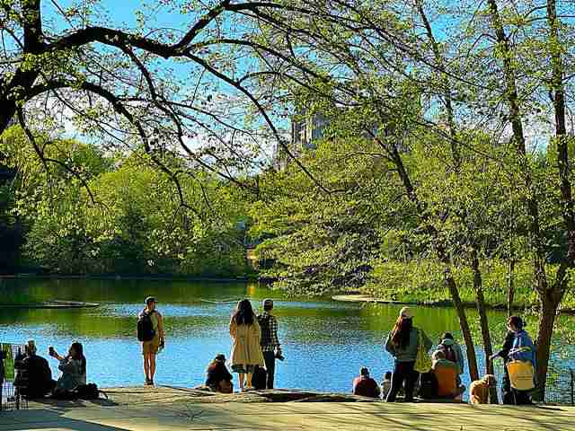Central Park (31)